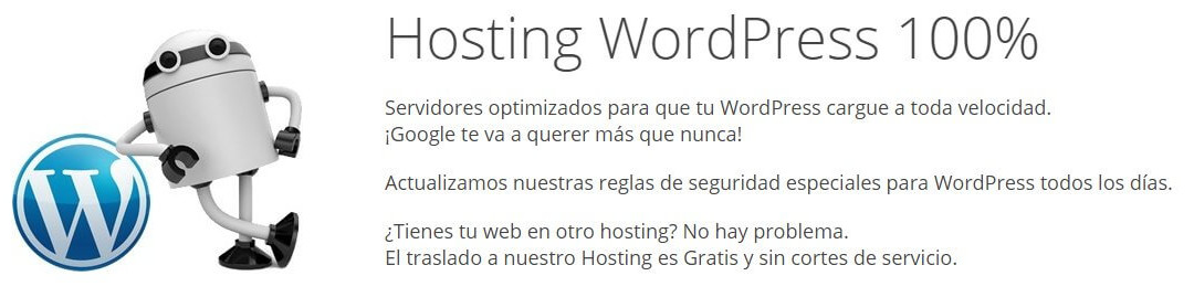 Opinión de Hosting: Webempresa